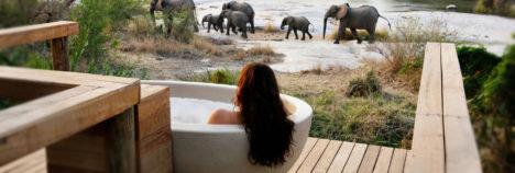 Bathe in African Luxury