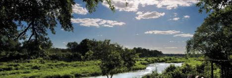 Magnificent Sabie River views