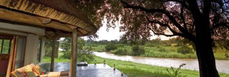 Glorious experiences under ancient Ebony trees