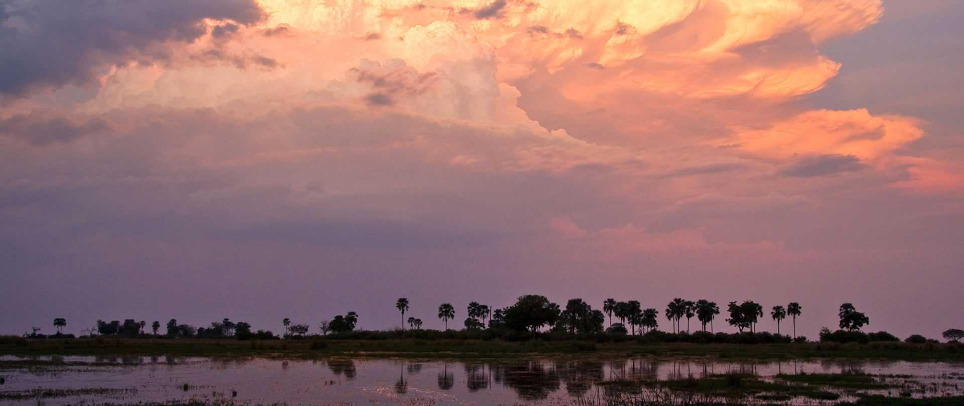 Botswana Safaris Okavango Safaris Okavango Delta