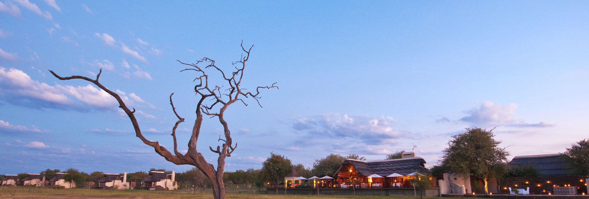 The crystal clear skies of the unblemished African wilderness