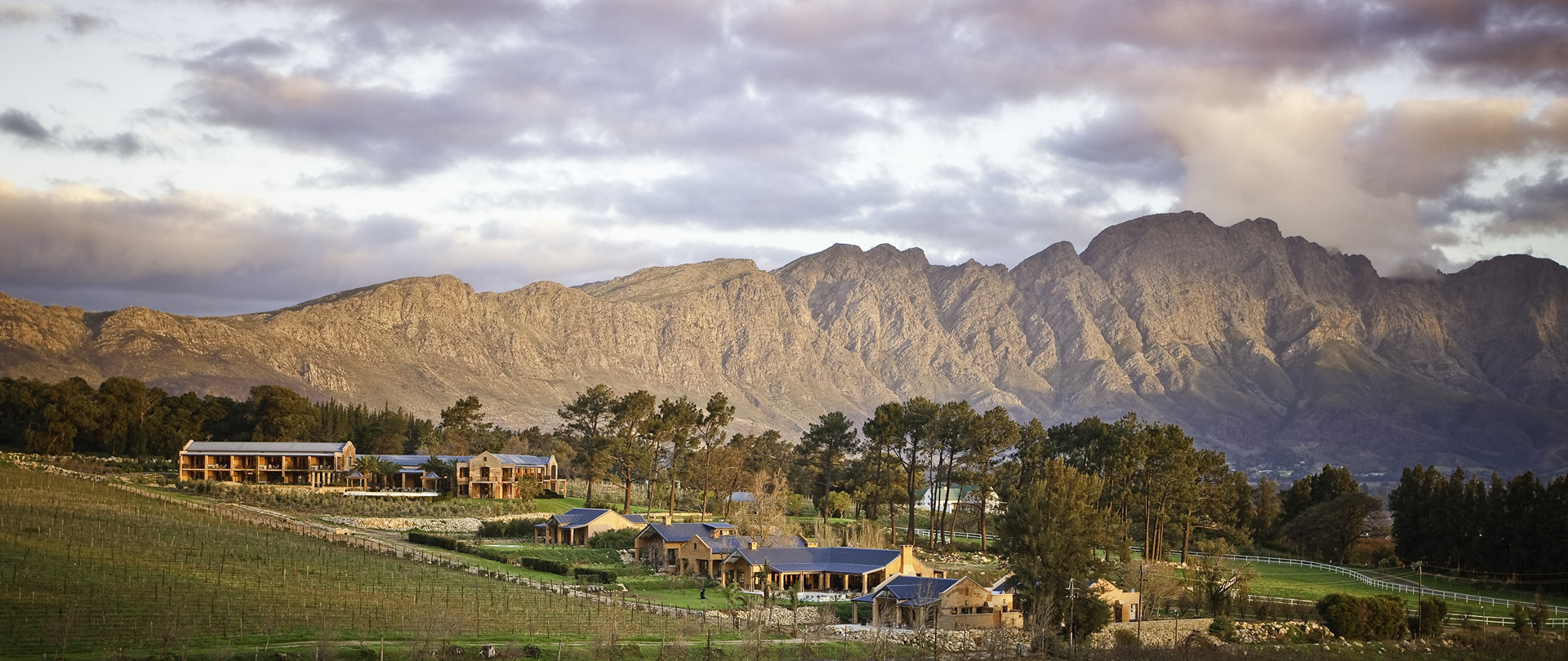 Lose yourself in the magnificent Cape Winelands