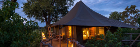 Elevated natural African experiences