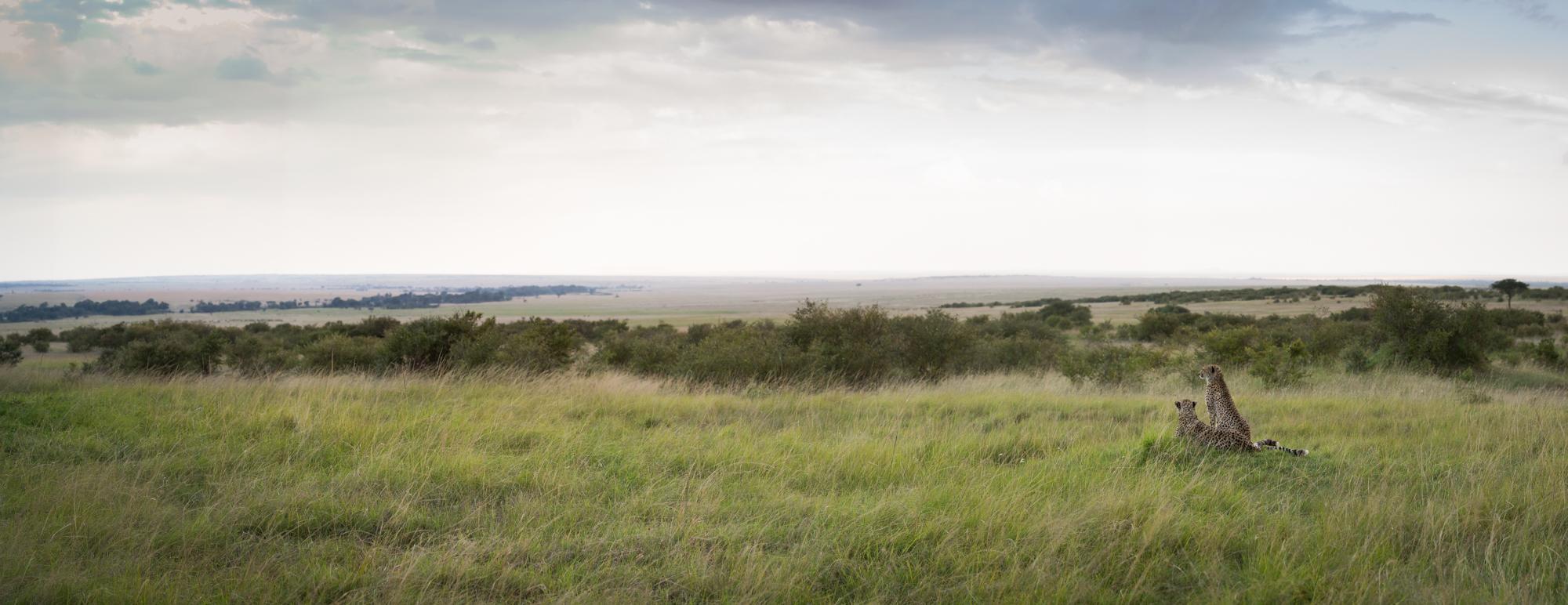Mara Plains-8