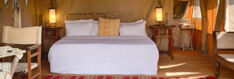 Feel right at home in the heart of the Serengeti