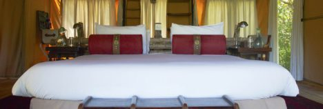 Your very own suite in the heart of the African bushveld