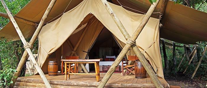 Camp-5306