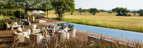 With the Serengeti as your back garden
