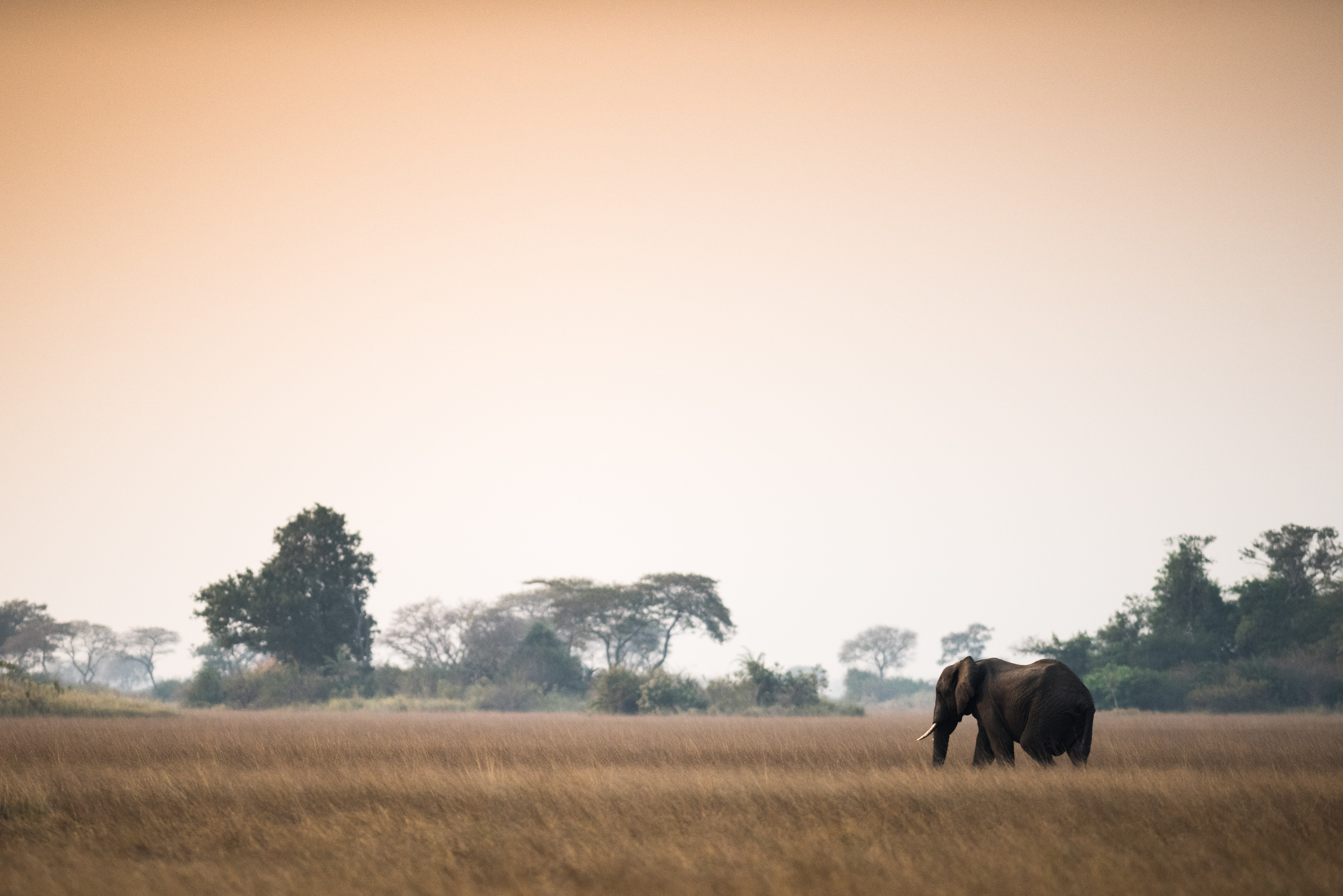 iconic-africa-6-of-32