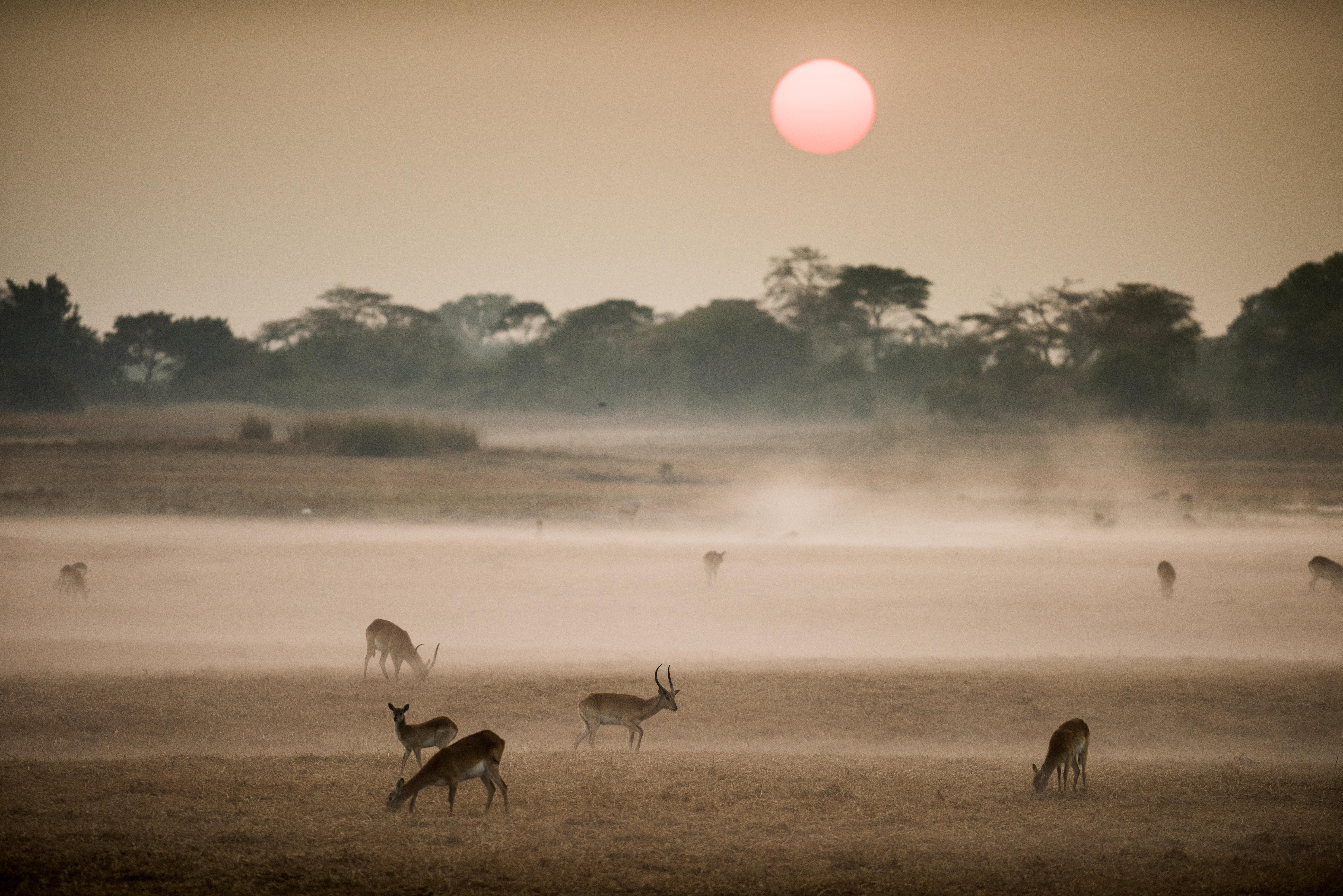 iconic-africa-8-of-32