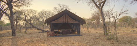Your own little piece of Chobe