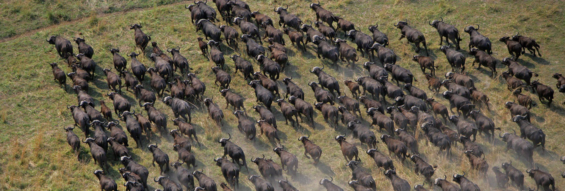 Breath-taking African experiences
