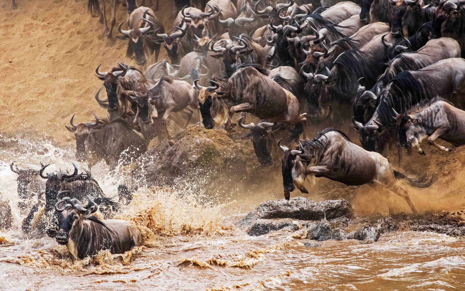 iconic-africa-east-africa-migration-african-luxury-safaris