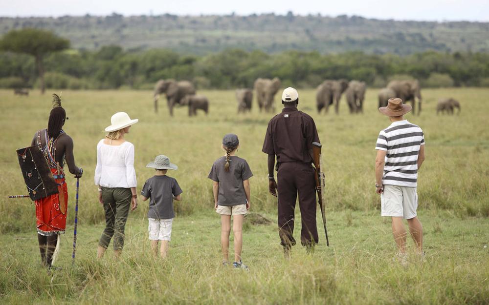 Walking Safaris Iconic Africa Pic