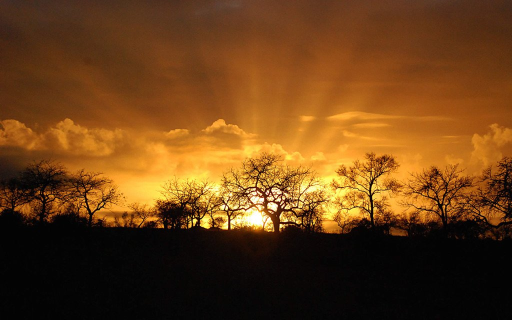 difference between national park and game reserve sunset