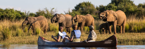 Home to large numbers of elephants