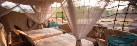 Your very own piece of the African bushveld