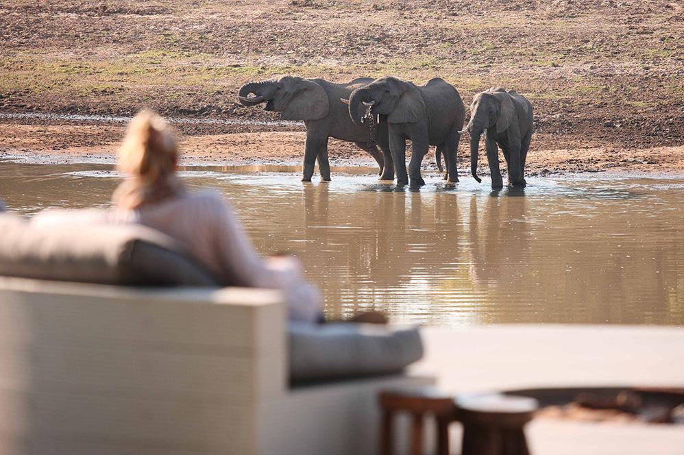 Zambia African Safari Travel