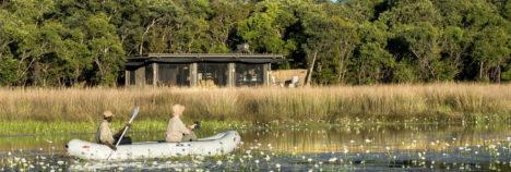 An intimate safari excursion
