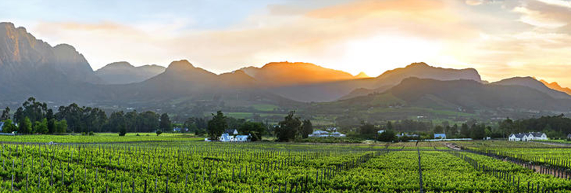 Luxury Golf And Wine Tour South Africa Franschoek 2
